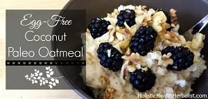 Egg-Free Coconut Paleo Oatmeal