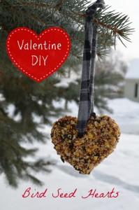valentine-bird-feeder-hearts-diy