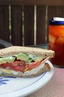 bacon-egg-avocado-sandwich