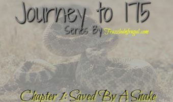 Journey to 175: Chapter 1 – Saved By A Snake